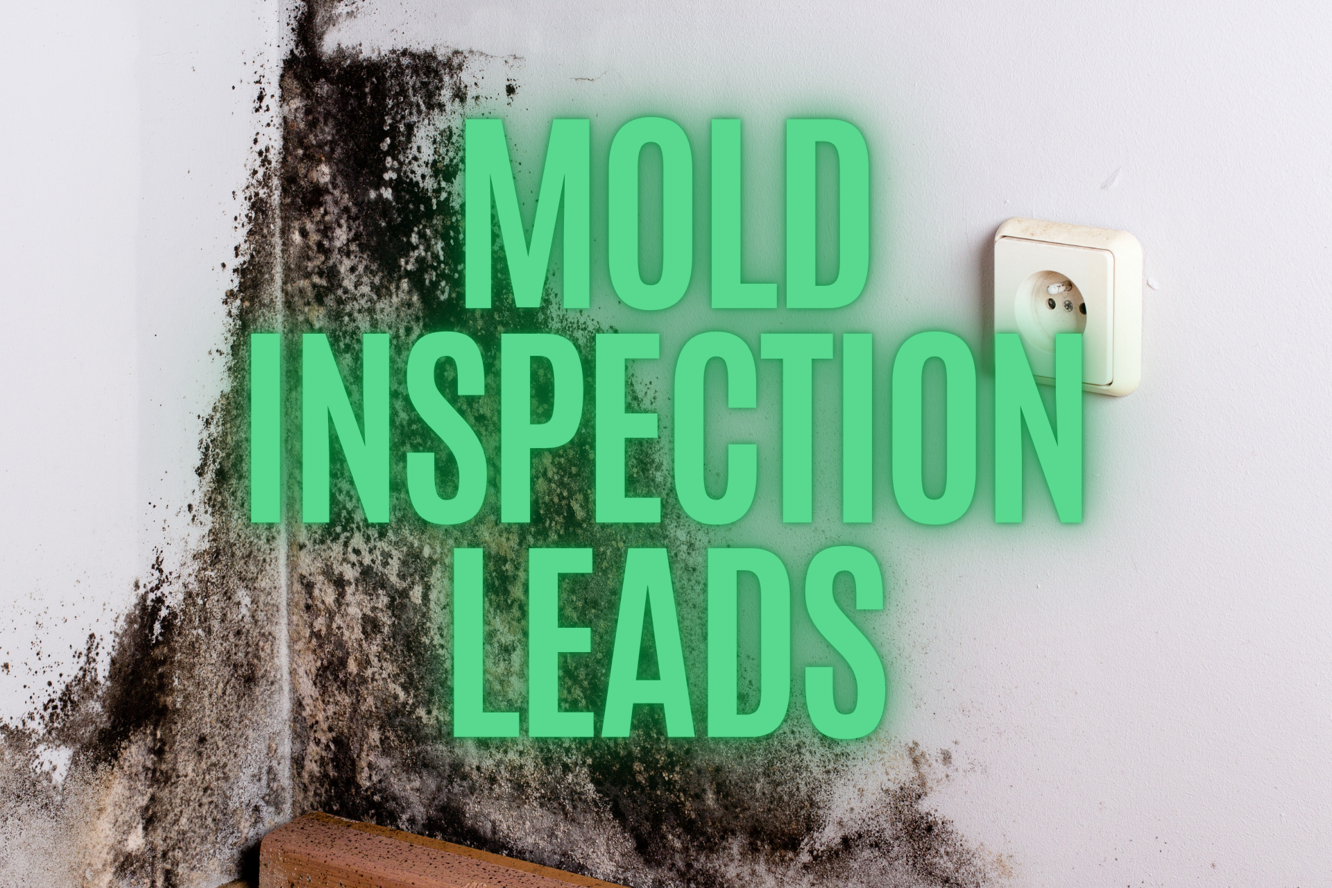 Mold inspection leads